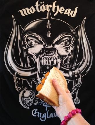 SnagFishFinger Sandwich