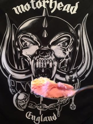 snagicecream